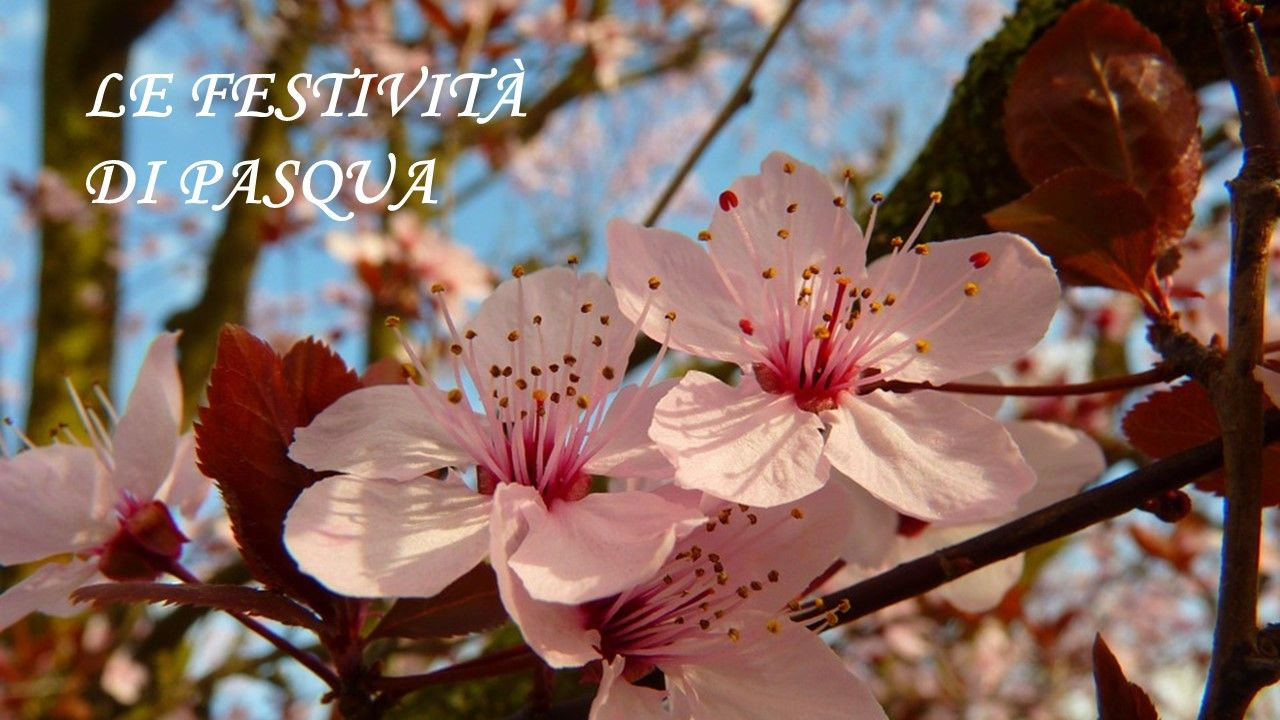 Menu Palme Pasqua Pasquetta Agriturismo Lama San Giorgio